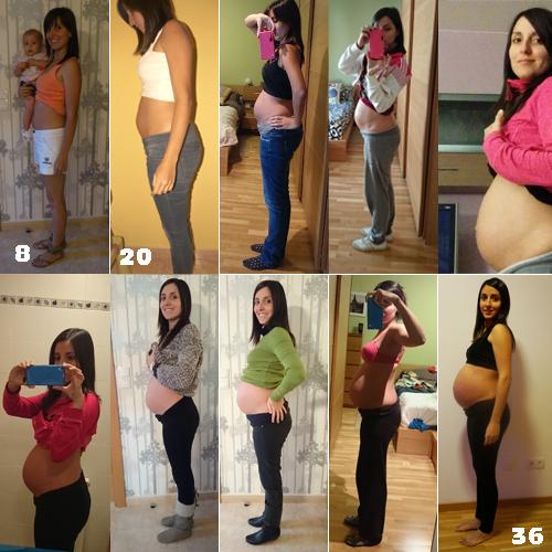 evolucion embarazo
