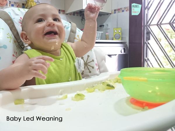 baby-led-weaning-6meses