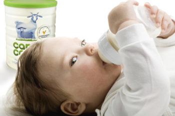 Leche de continuación hecha a base de leche de cabra: Capricare