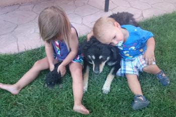 Animales y niños: creciendo juntos